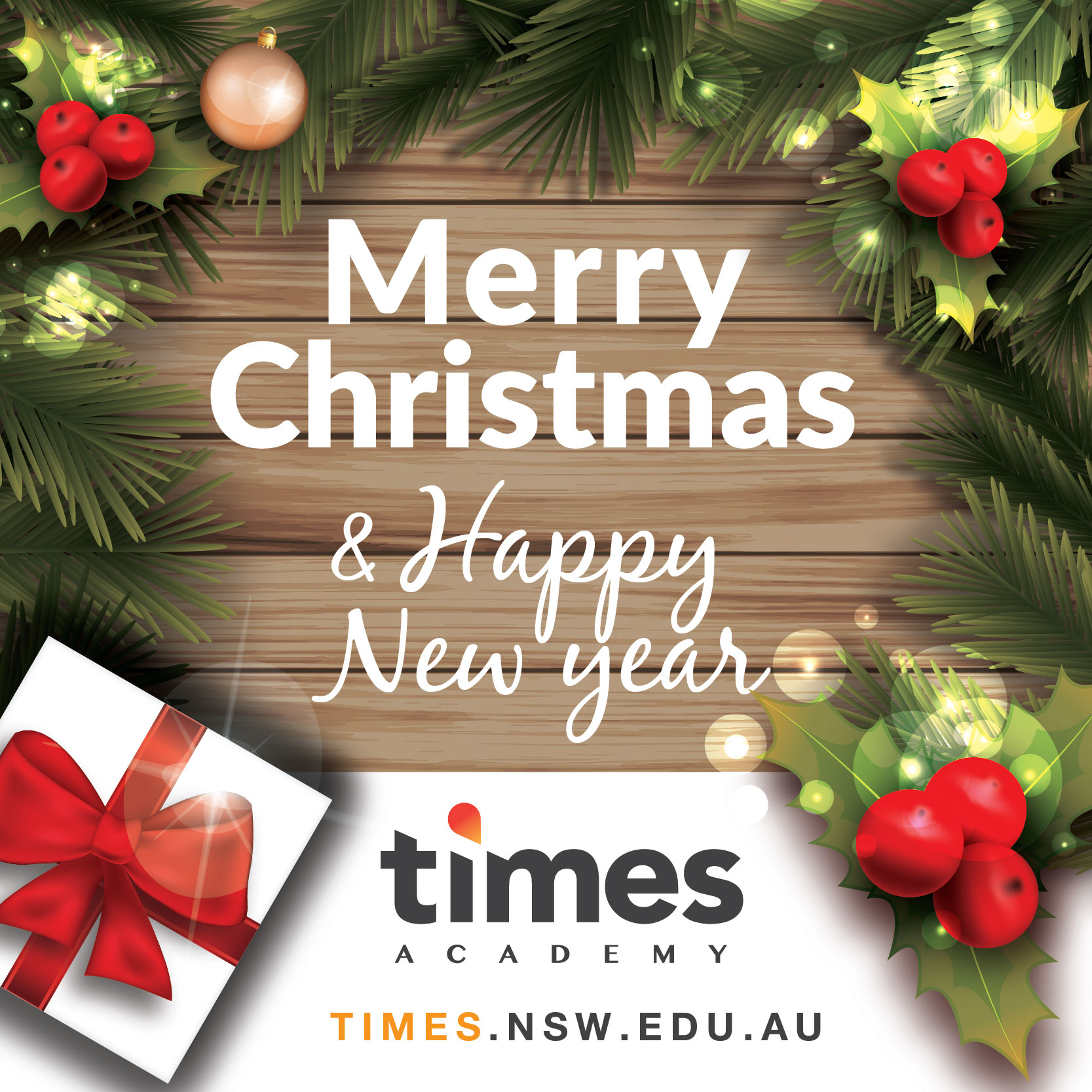 Times Academy wishes you a Merry Christmas and Happy New Year ...